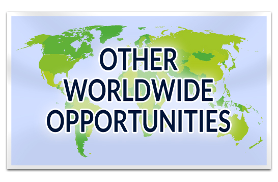Other Worldwide Opportunities
