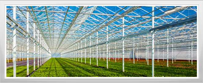 Greenhouse Apprenticeship Program